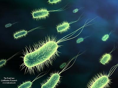 Bakterie na paznokciach! :D