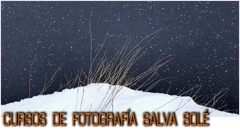 Cursos de Fotografía Salva Solé