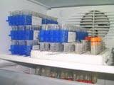 Visita Laboratorio de Herpetologia UFMG BH