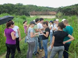 Campo Pedologia Embrapa milho e Sorgo Sete Lagoas