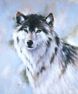 Photo A gray wolf in the snow