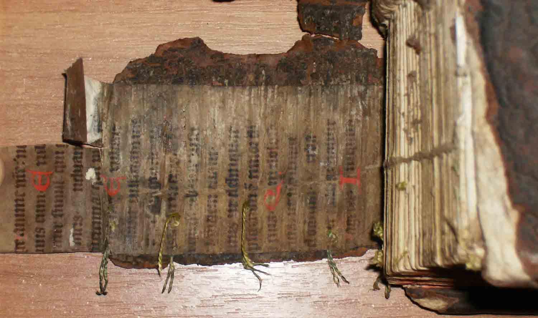 [1661+CORNELIUS+A+LAPIDE+_COMMENTARIA+IN+PROPHETAS+MINORES+011.jpg]