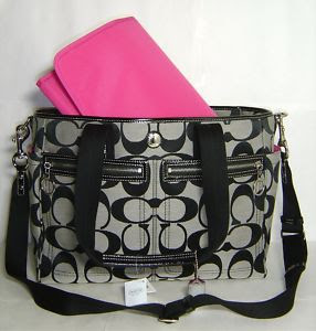 The Panda Bear Chronicles: The most beautiful diaper bag in the world!
