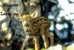 Oι Κυνηγοί με Άφησαν Ορφανό