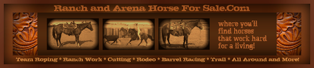 Ranch and Arena Horse For Sale.Com