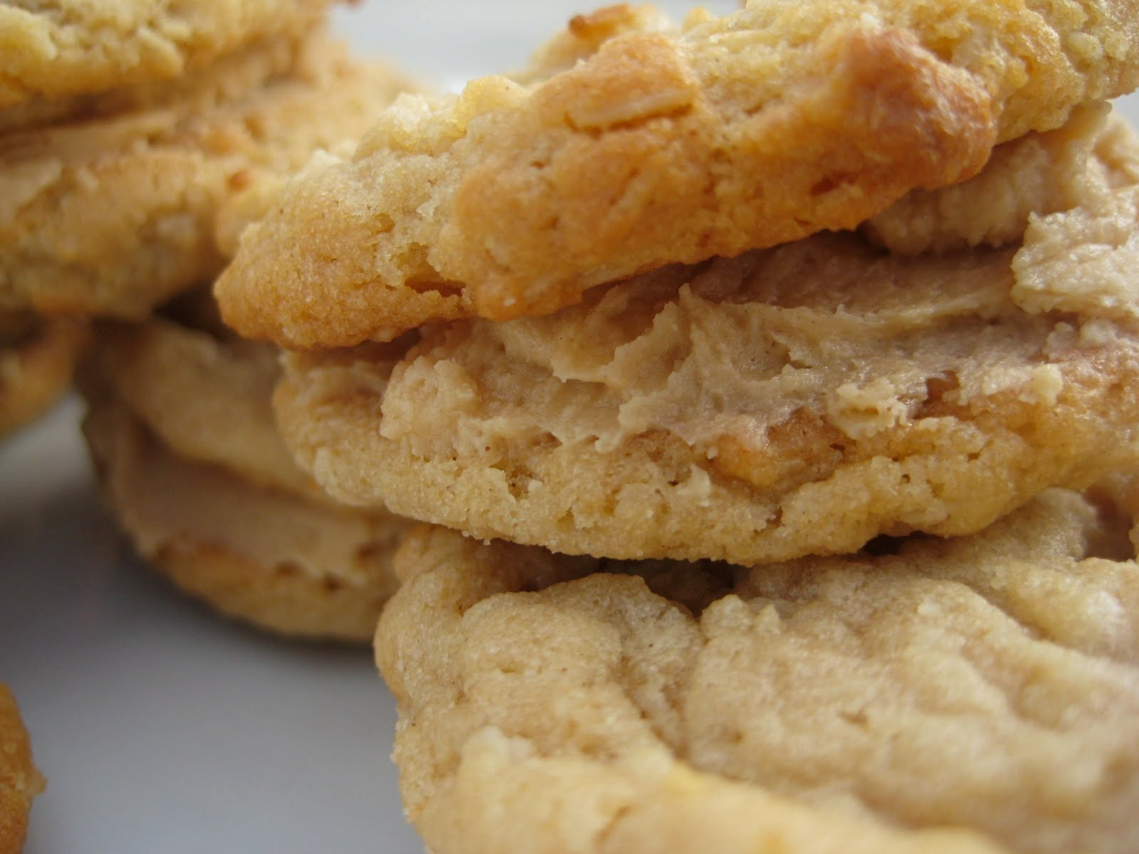 Girl Scout Peanut Butter Oatmeal Sandwich Cookies | A ...