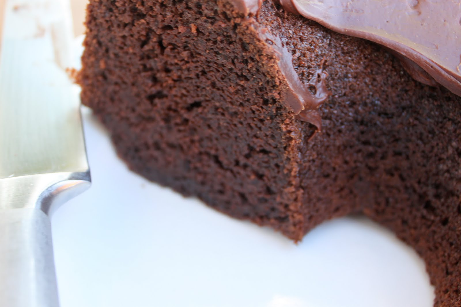 Fool Proof Chocolate Bundt Cake with Fudge Frosting - A Bountiful ...