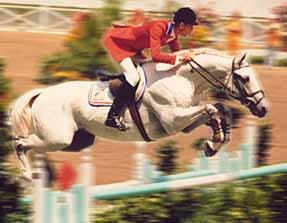 Abdullah horse03