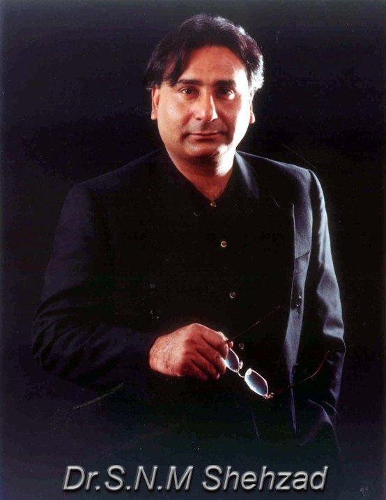 WHO IS WHO IN KARACHI: Syed Shehzad (S N M Shehzad)