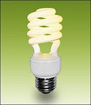Compact Fluorsent Light (CFL) Bulbs