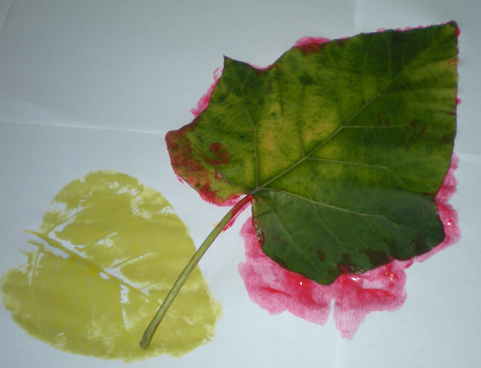 preschool playbook leaf print project