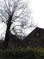 black trees and warehouse at glen grant