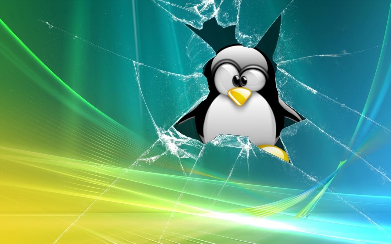 http://3.bp.blogspot.com/_PWWGgOExnUk/TRNENmKaGhI/AAAAAAAAAOE/MviyOkFhHDc/s1600/ubuntu_wallpaper_broken_vista_tux_1280x800.jpg