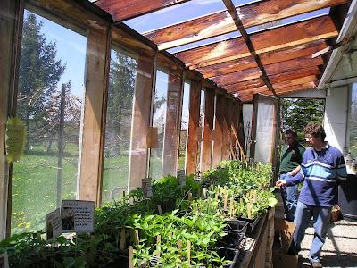 Meeting Place Organic Farm Plants for Sale
