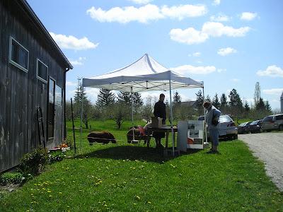 Meeting Place Organic Farm Reception