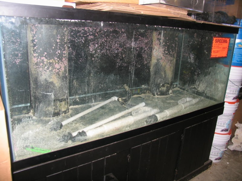 Giant aquariums 210 gal no dimensions for Craigslist fish tank