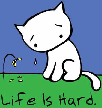 http://3.bp.blogspot.com/_PZUT7DiTy9I/SV6QPiRcE_I/AAAAAAAAAys/Dh2k5Txg1xM/s400/sad-cat1.jpg
