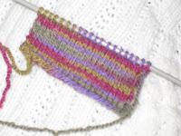 xela light swatch