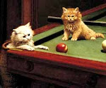 Snooker's Governing Body