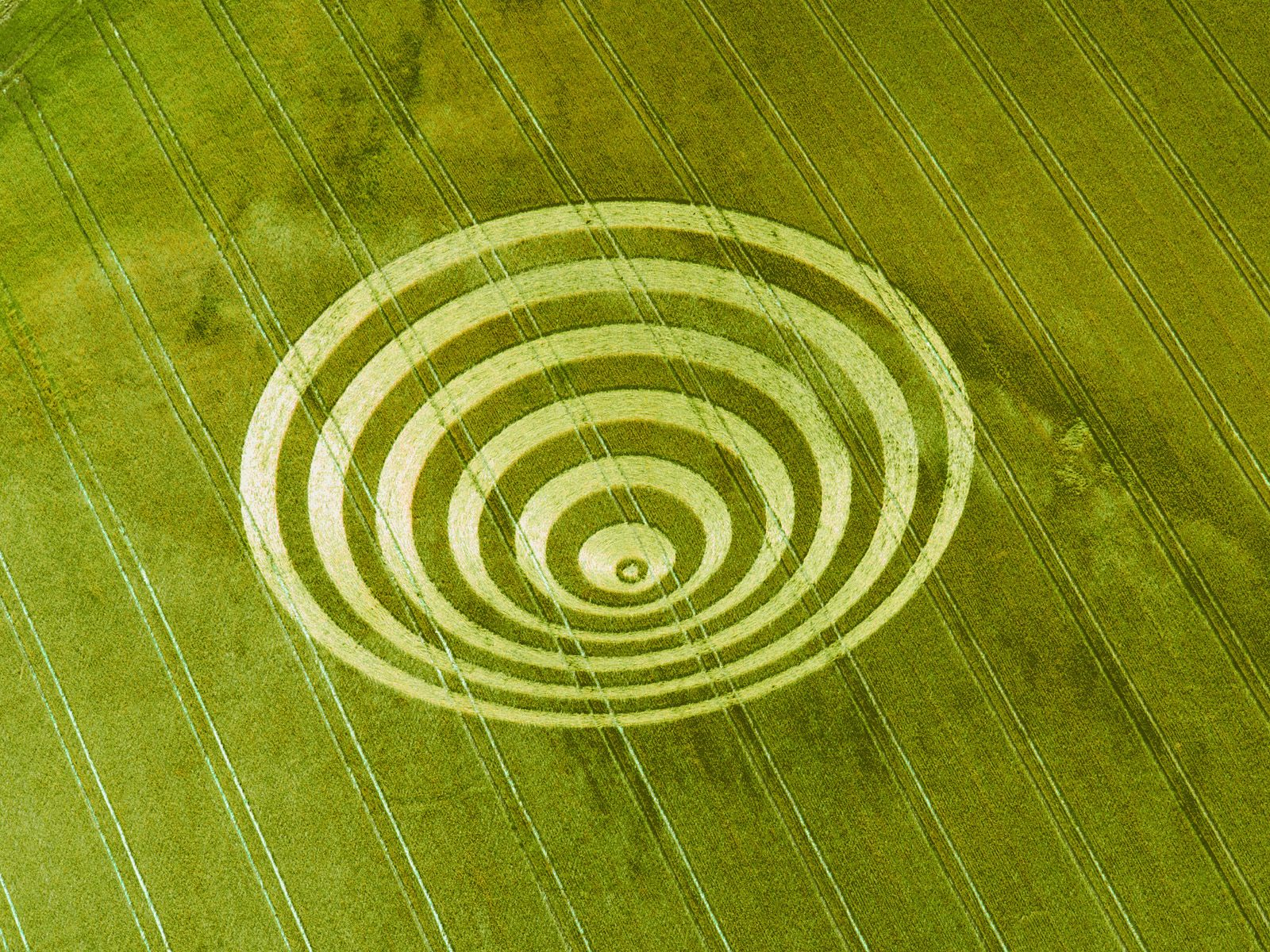Crop Circle Cissbury_Rings