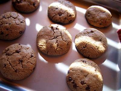 Egg-Free Wheat-Free Chocolate Chip Cookie Recipe