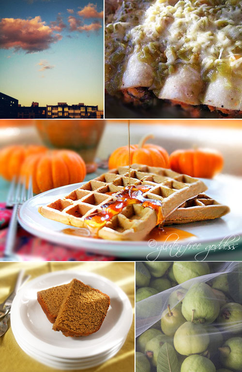 Gluten free recipes for Fall and Thanksgiving with vegan and dairy free recipes as well