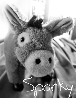 My burro Sparky