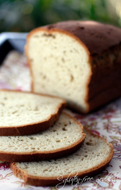 Favorite delicious gluten free bread