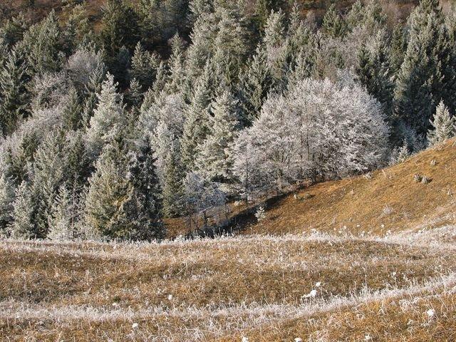 [Mihoric+-+Zima+brez+snega.jpg]