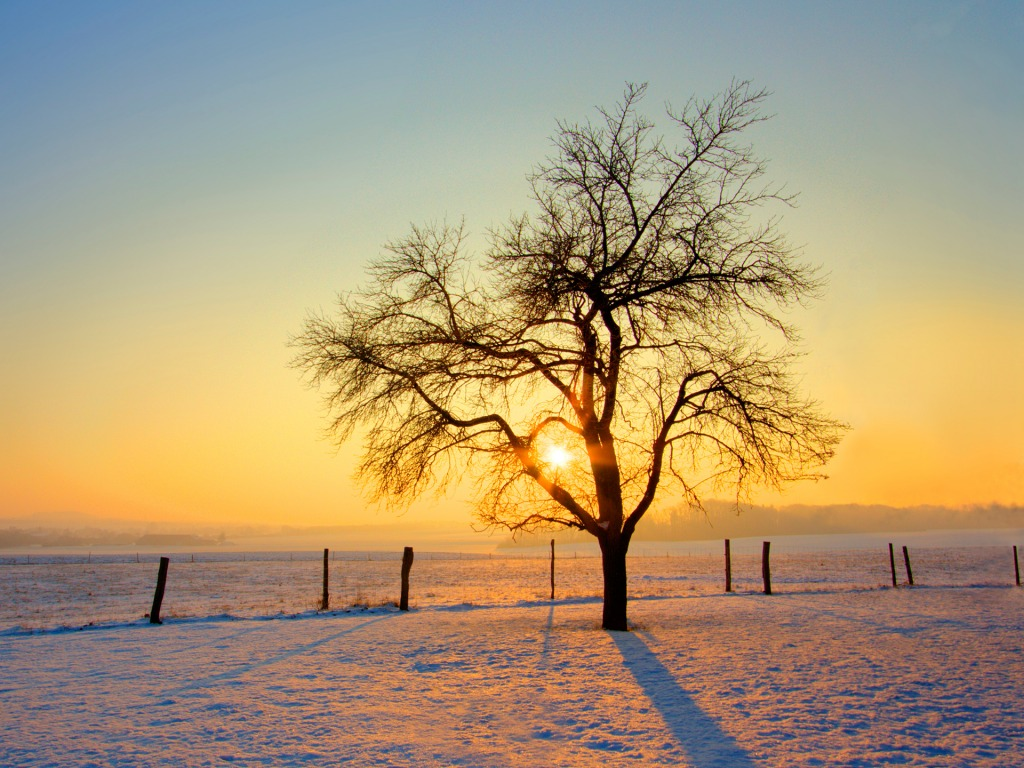http://3.bp.blogspot.com/_Pbah3DkB1y4/TSoASEV6d8I/AAAAAAAAAa8/mqgVykVmBMc/s1600/cold-morning-03.jpg