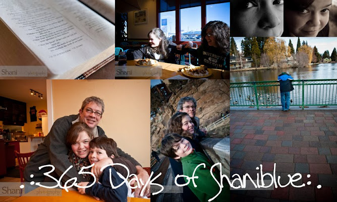.: 365 Days of Shaniblue :.