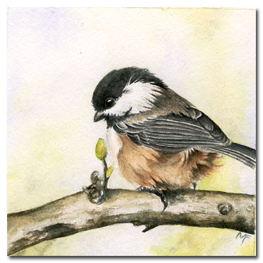 watercolour chickadee painting