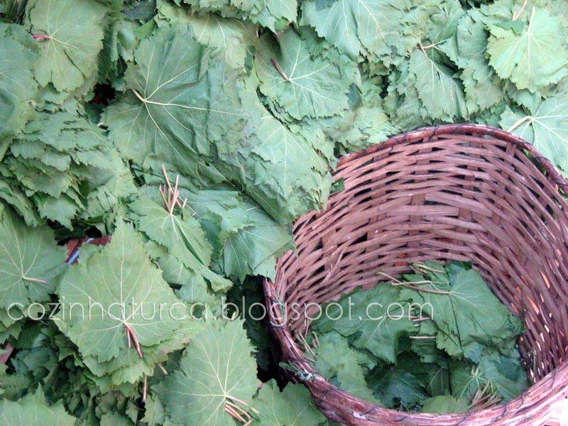 Folhas de videira para sarma