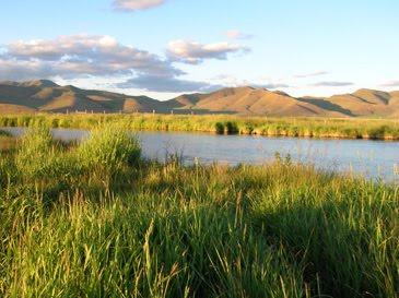 Idaho nature notes silver creek fishing report august for Silver creek idaho fishing
