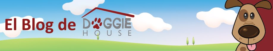 El Blog de Doggie House