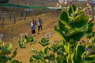 Zack & Erik - Desert Farm