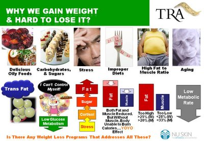 Can You Lose Weight Eating Eggs