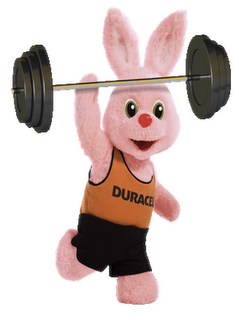 duracell%2520bunny.png