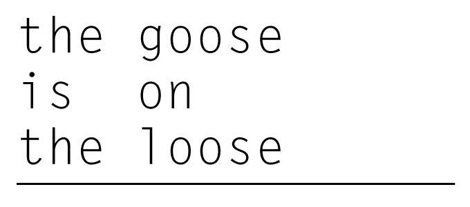 thegooseisontheloose