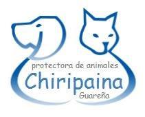 Chiripaina