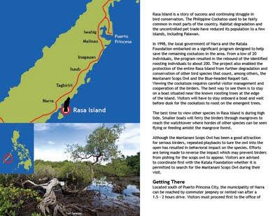 Birdwatching in the Philippines Volume 1 - Rasa Island, Narra, Palawan