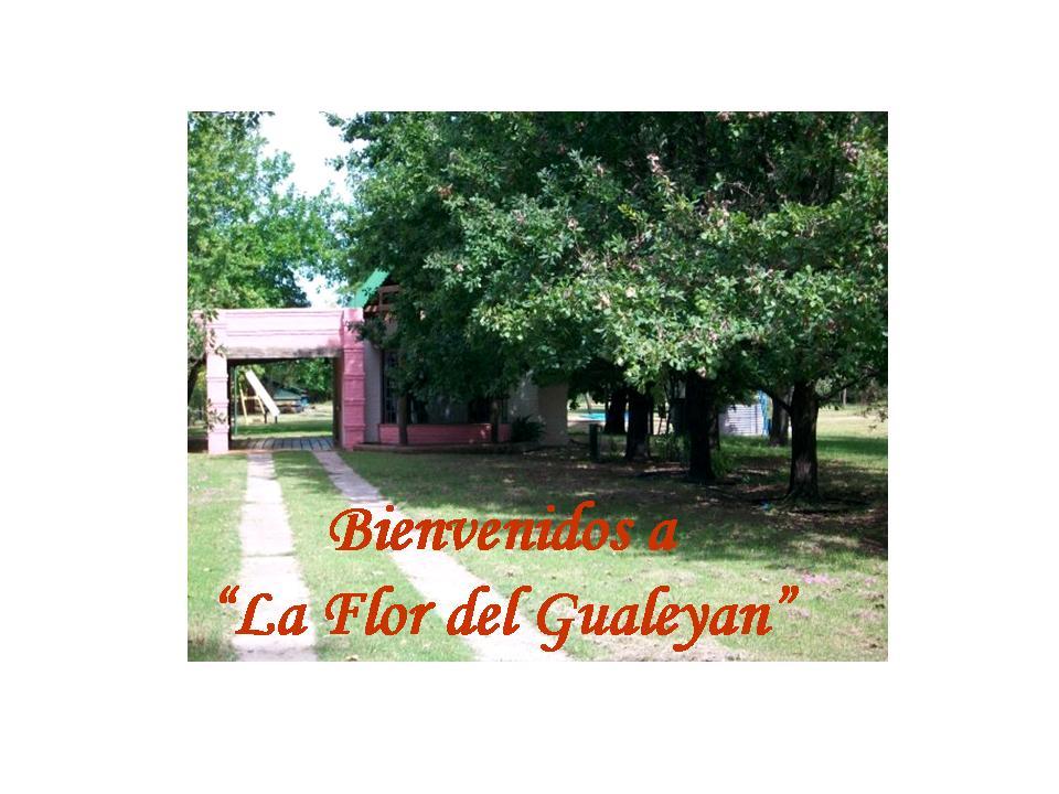 """La Flor del Gualeyan"""