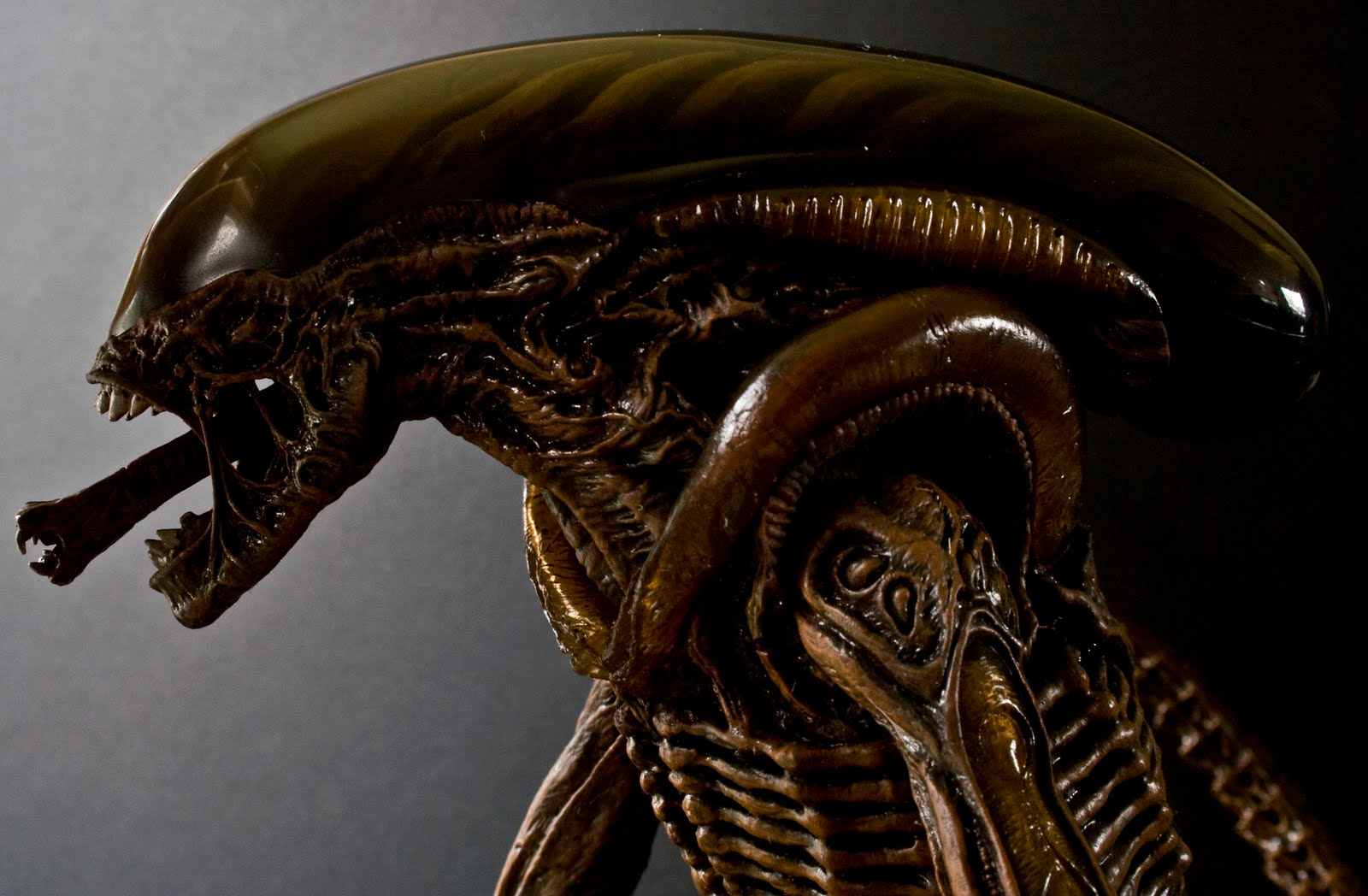 The gallery for --> Sexy Xenomorph