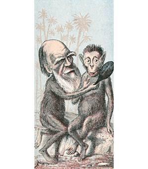 Darwin and his ancestor