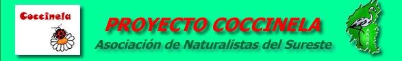 Proyecto Coccinela (ANSE)