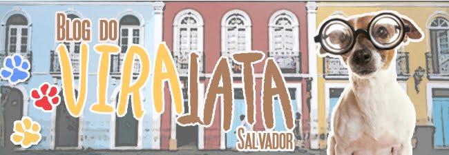 Vira Lata Salvador