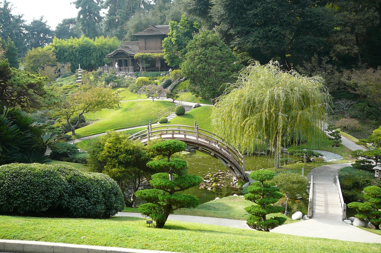 Chinese meditation garden for Japanese meditation garden