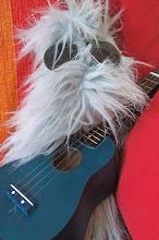 Kiki, alias le manteau du micro et de Mini Chewbacca