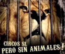 No to Animals in Circuses