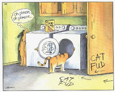 cat into a clothes dryer by enticing him with paw-lettered signs and